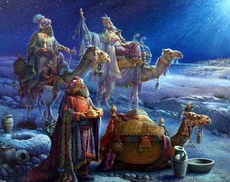 Camel Christmas Pictures