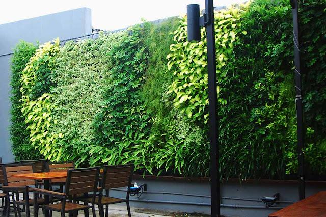 Carls Jr Kemang Green Wall