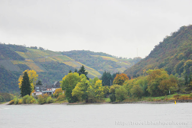 Mosel wine tour