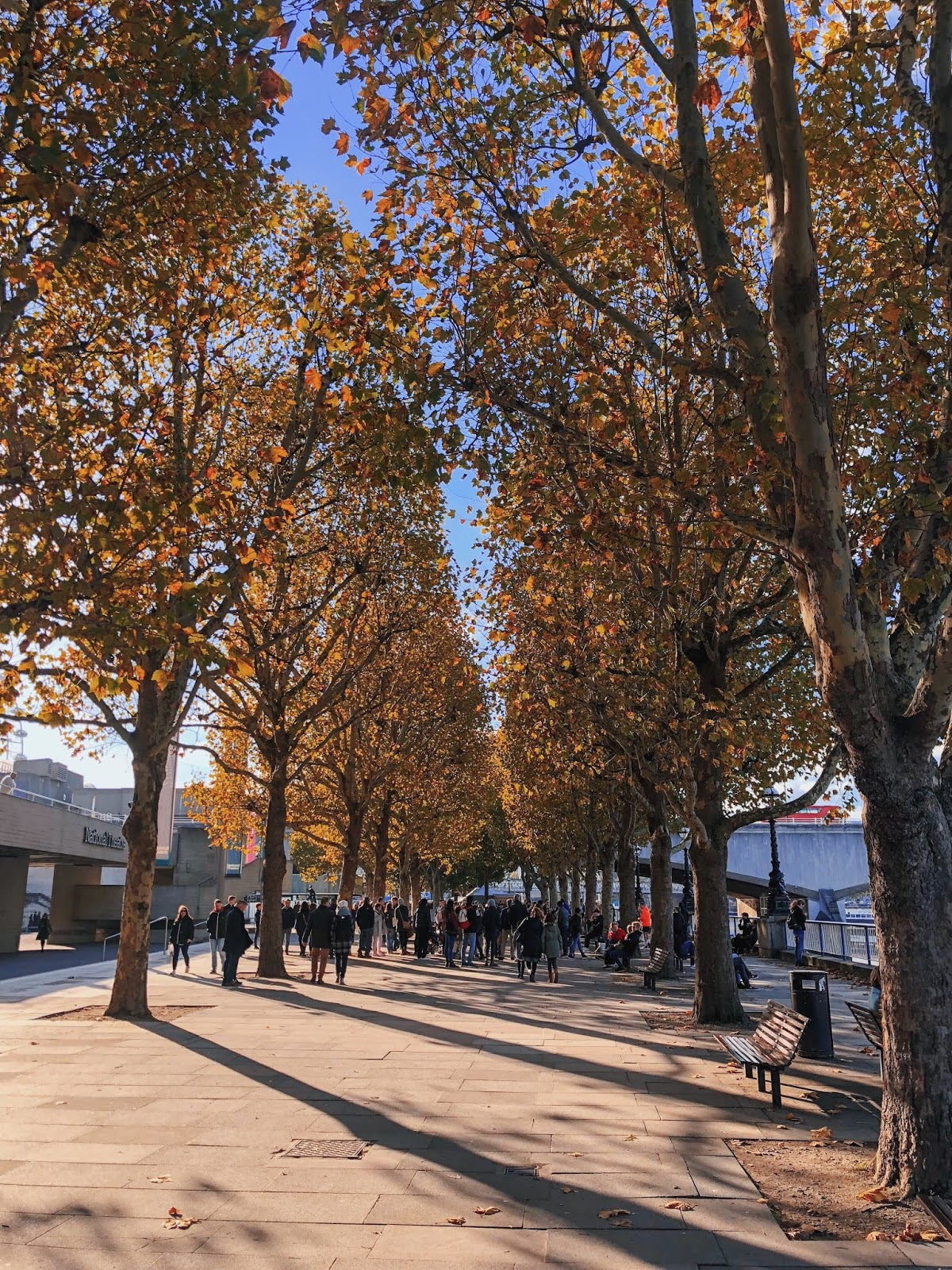 london instagram spot, autumn in london, indian blogger, london blog, south bank