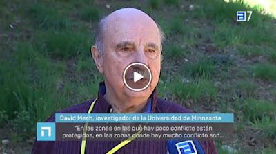 http://www.rtpa.es/nacional:-Zonas-en-las-que-se-permita-cazar-lobos-y-zonas-en-las-que-se-prohiba-segun-el-nivel-de-conflito_111492864120.html