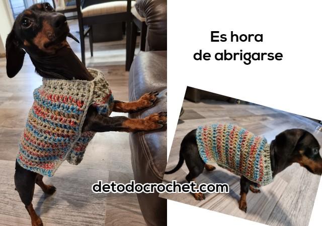 como-tejer-abrigo-para-perros