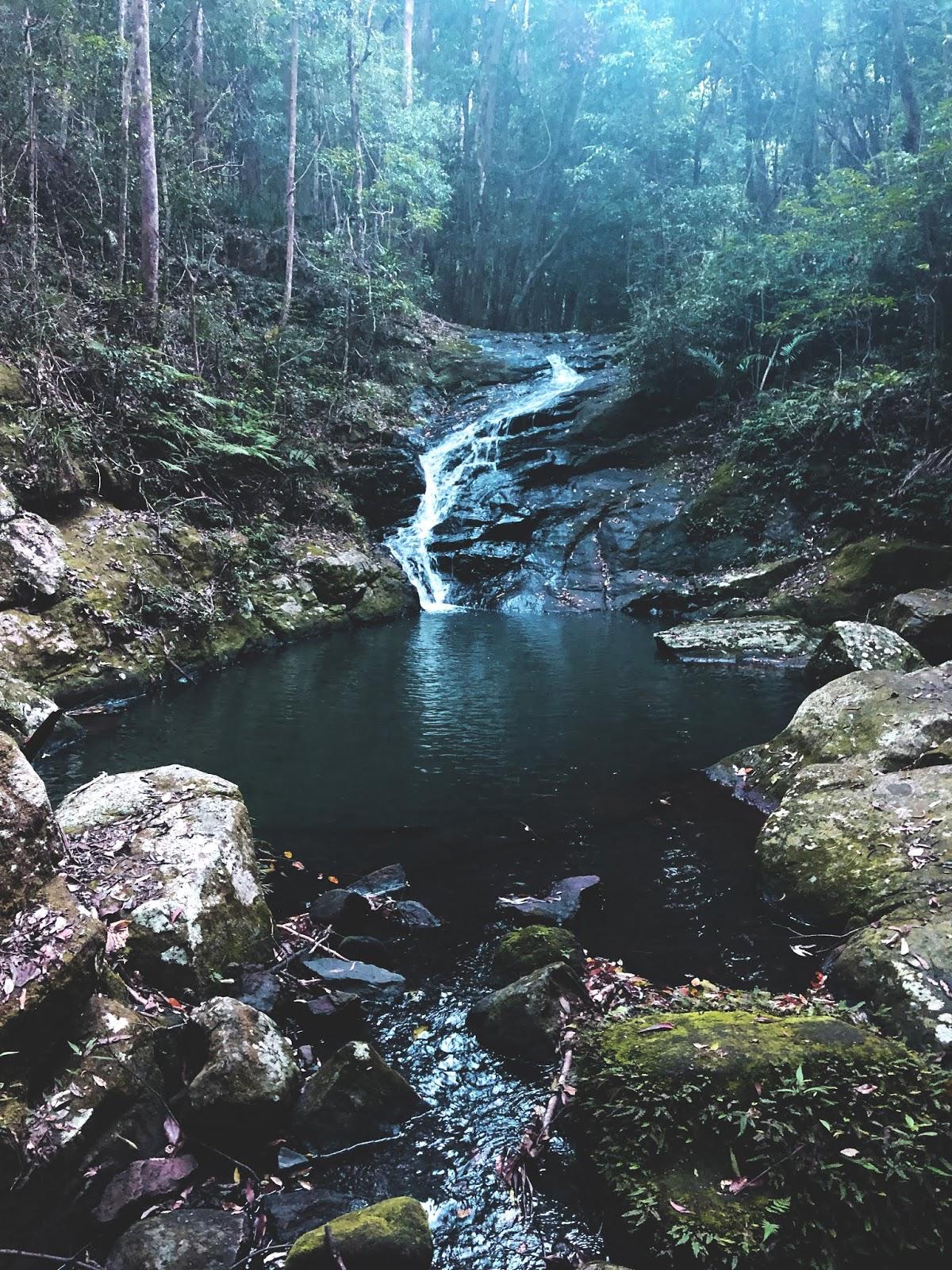 Wodospad w Park Narodowy Kondalilla