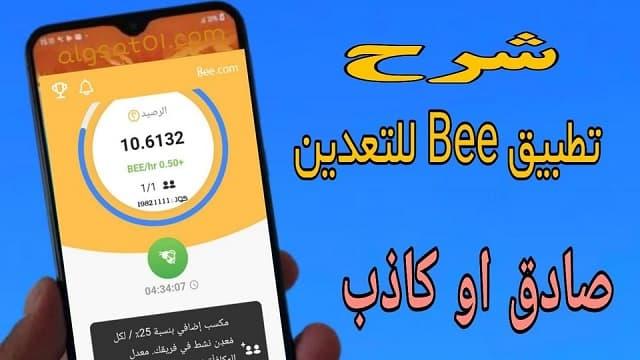 شرح تطبيق Bee Network وهل هو صادق ام احتيالي