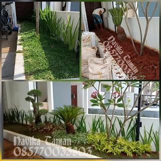 Tukang Taman Yasmin Bogor
