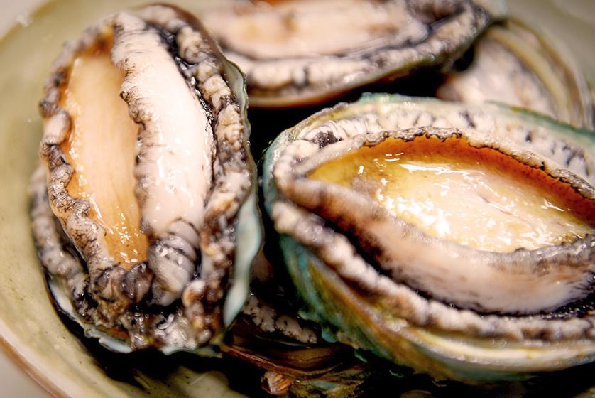 Paua, a native New Zealand abalone.
