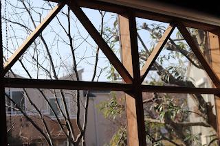 コンサバトリーのアトリエ窓から見える空と木の枝
