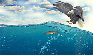 Pengertian Perlombaan senjata evolusioner Pada Hewan dan Jenisnya