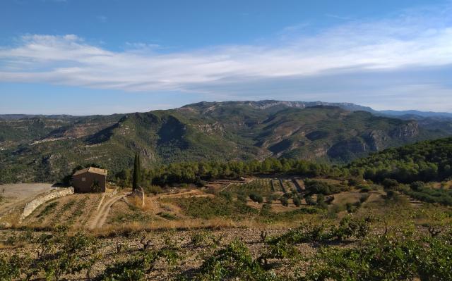 Vistes del Montsant des de l'ermita