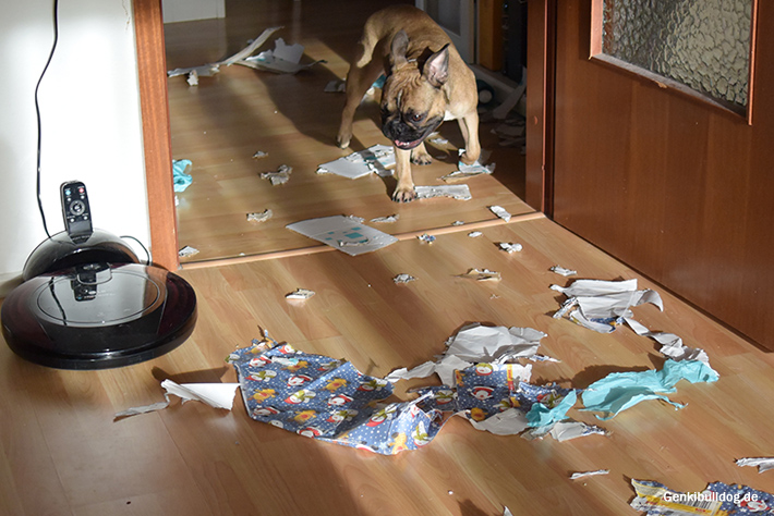 Hunde Bloggerwichteln