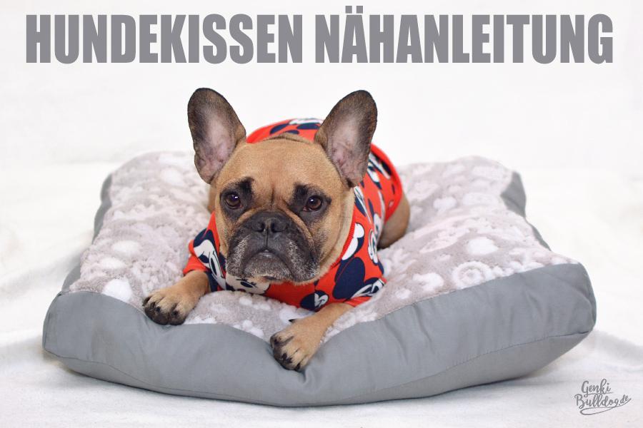 Anleitung Hundekissen selbst nähen