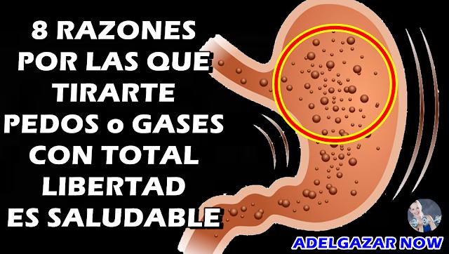 8 Razones Por Las Que Tirarte PEDOS o GASES con Total LIBERTAD es SALUDABLE