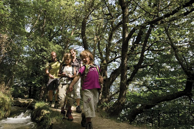 Spazieren Sie entlang der vielen Waalwege in Südtirol...