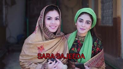 Sinopsis dan Senarai Pelakon Drama Sara Sajeeda