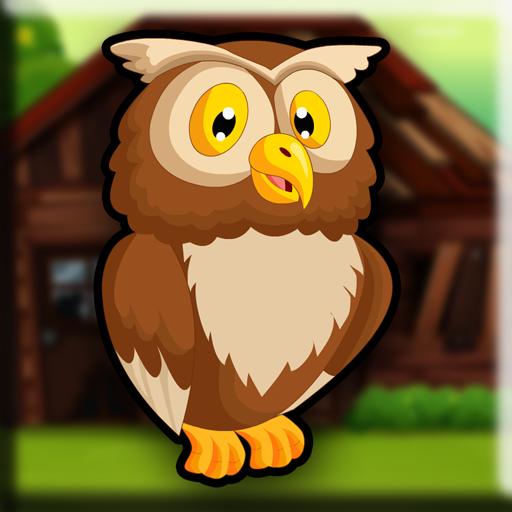 Tawny Owl Escape