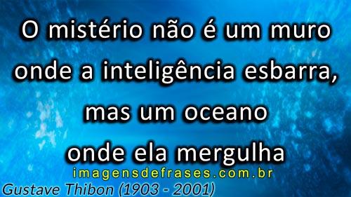 O mistério não é um muro onde a inteligência esbarra, mas um oceano onde ela mergulha