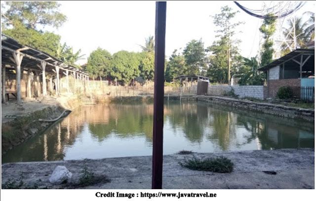 Kolam Pemancingan Wanguk