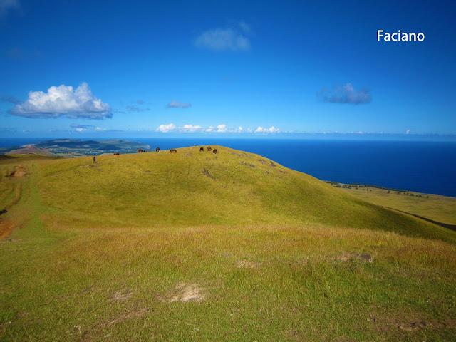 Easter Island復活節島,法姿優乾洗頭乾洗髮