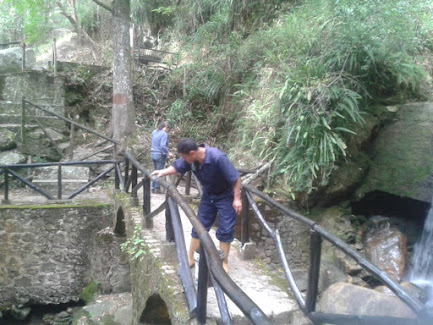 Parque Zoológico Chorros de Milla celebrará su aniversario remozado