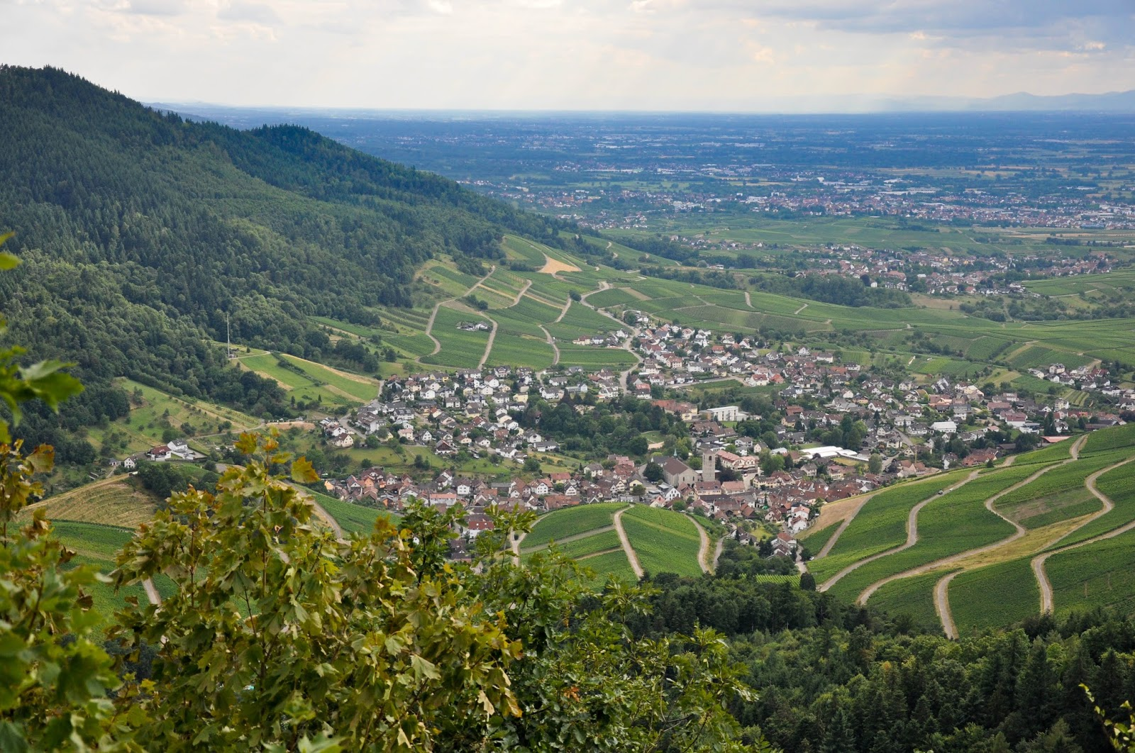 The Black Forest and the Rhine valley seen from the Yburg Castle, Germany