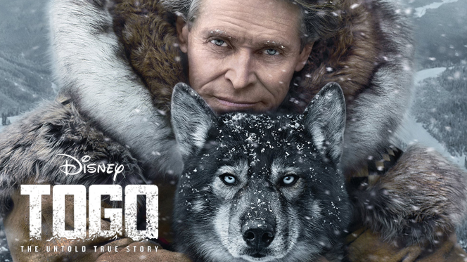 Togo (2019) Web-DL 720p Latino-Ingles