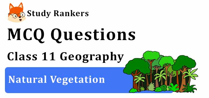 MCQ Questions for Class 11 Geography: Ch 5 Natural Vegetation