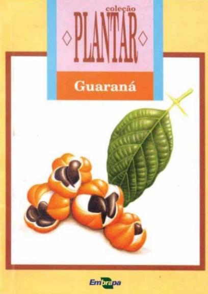 A cultura do guaraná