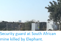 https://sciencythoughts.blogspot.com/2019/06/security-guard-at-south-african-mine.html