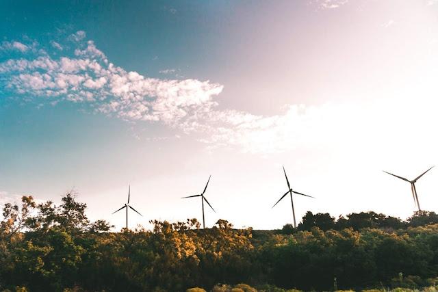 Windmills near green trees