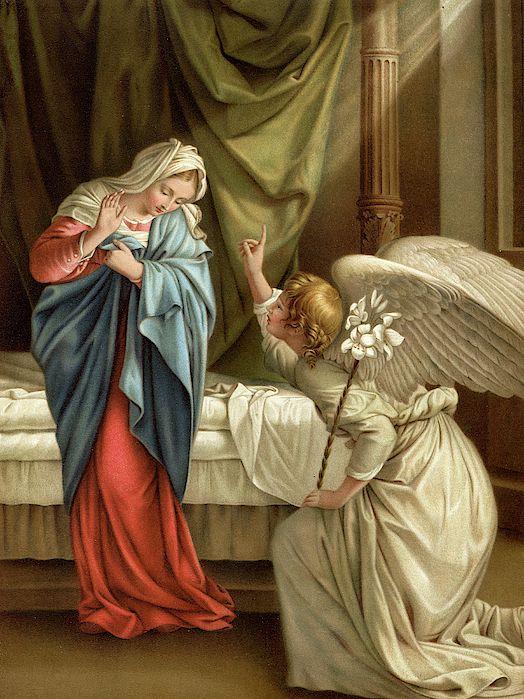 Cronograma para a Total Consagração à Santíssima Virgem Maria: Novembro de 2021