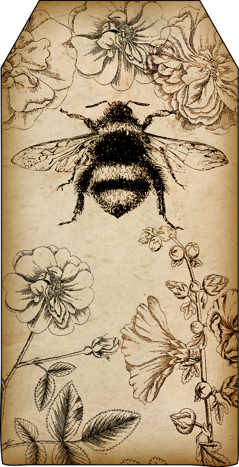 image relating to Bee Printable referred to as Bountiful Heirlooms: Absolutely free Printables: Bee and Beekeeping Tags