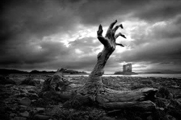 12 Wujud Manusia Ketika Dibangkitkan Dari Kubur, Ada Seperti Babi