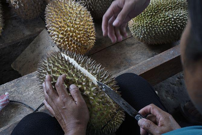 Penjual durian membelah salah satu duriannya