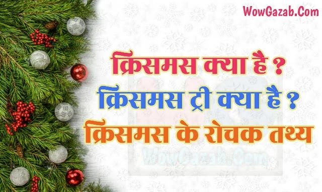 क्रिसमस डे के रोचक तथ्य (Interesting Facts About Christmas Day)