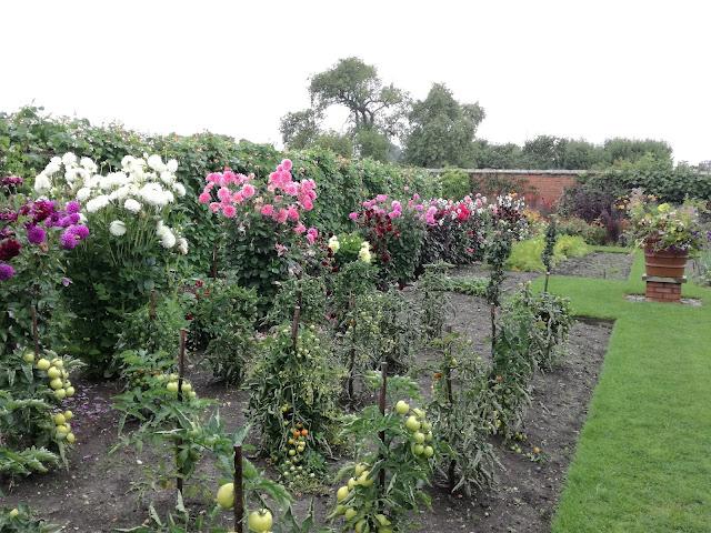angielski ogród kuchenny