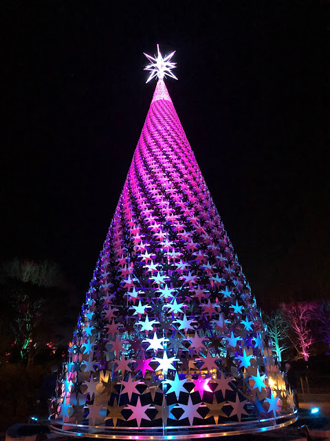 Impressive Pride and Promise Holiday Tree by Tanner Woodford rises above in splendor.