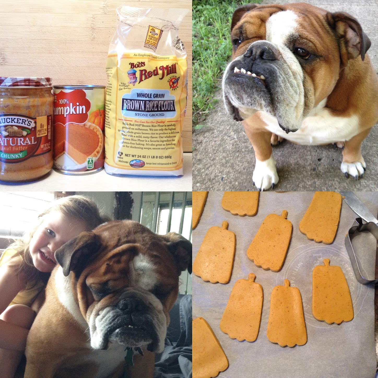 easy homemade dog treats