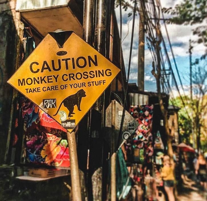 Sacred Monkey Forest Bali Indonesia
