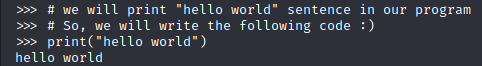 comment in Python