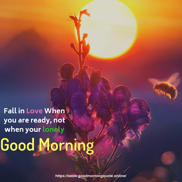 share chat good morning images,sharechat good morning,good morning sharechat
