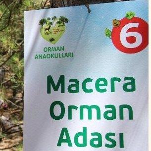 Orman Okulları İçin İlke ve Kriterler