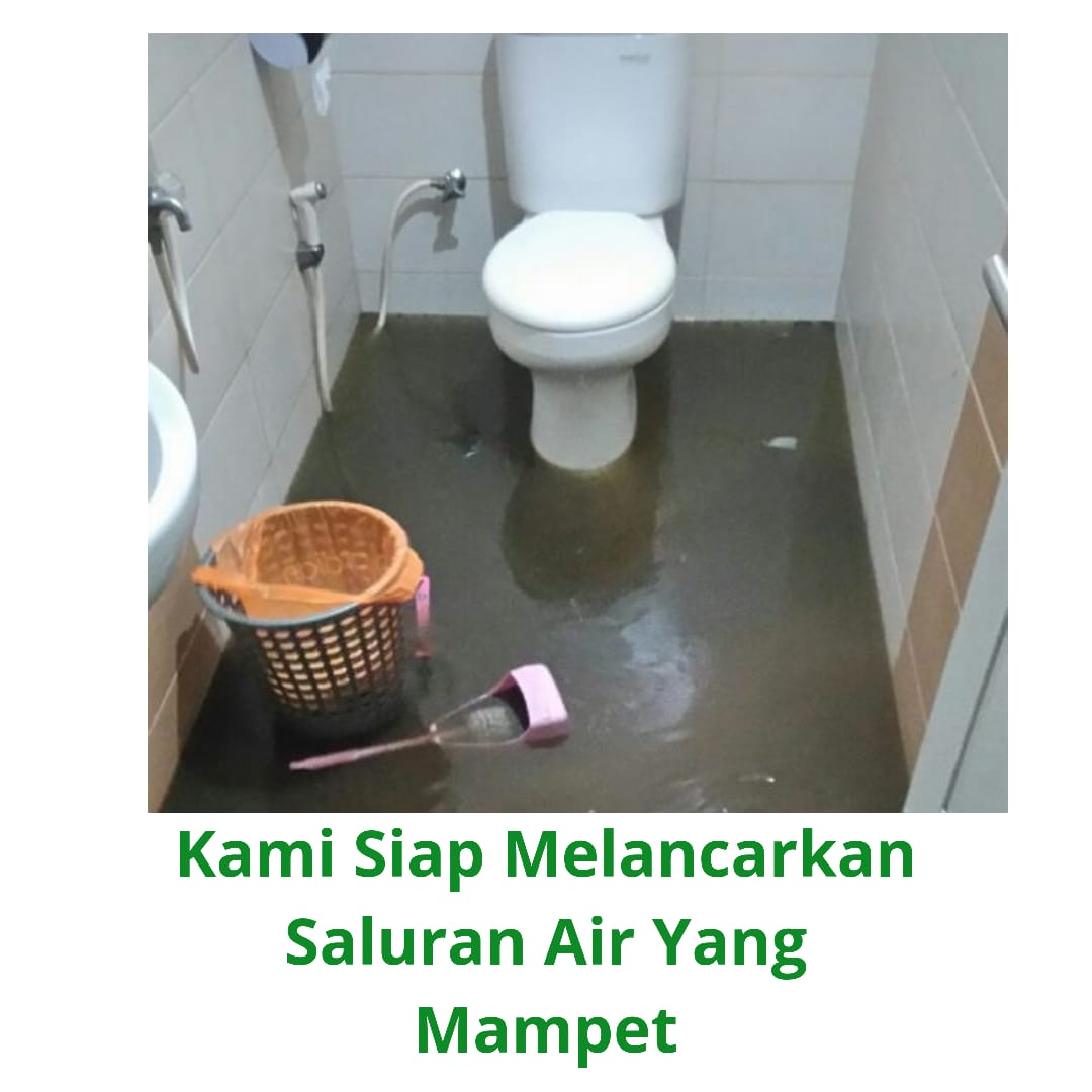 jasa sedot wc mampet septictank penuh