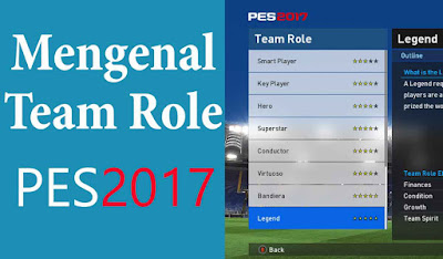 team-role