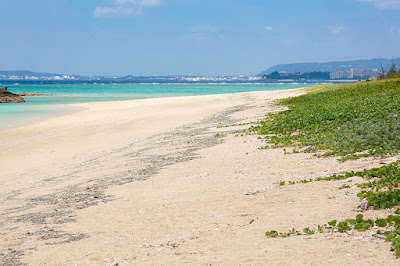 沖縄本島 ビーチ 海底火山 軽石
