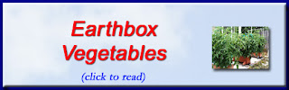 http://mindbodythoughts.blogspot.com/2012/04/earthbox-vegetables-are-best.html