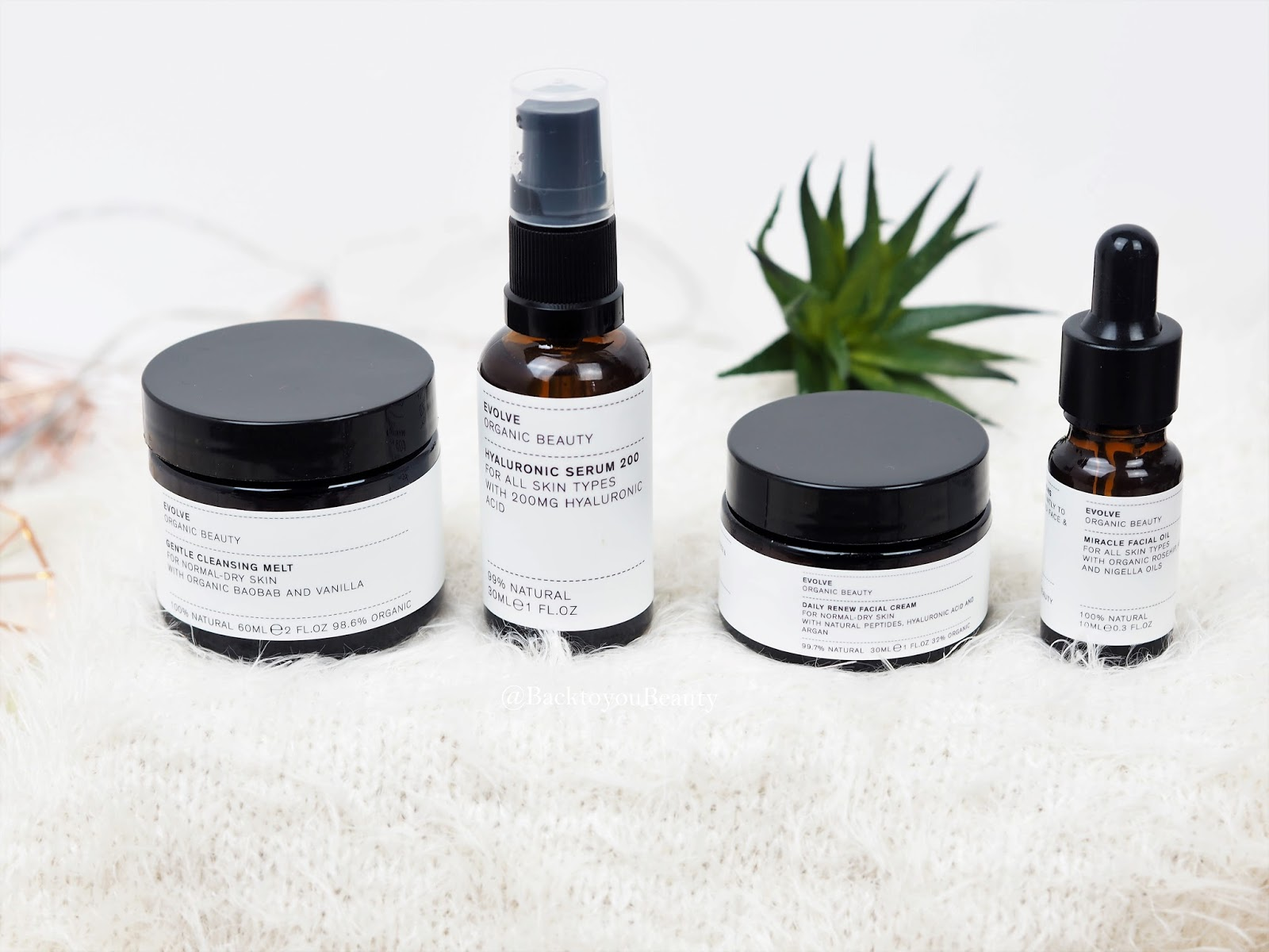 Evolve Organic Beauty 4 Piece Daily Skincare Collection