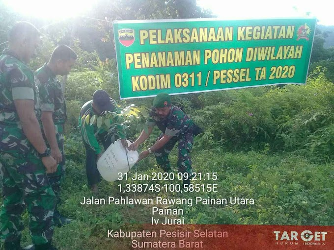 Mitigasi Bencana Kodim 0311 Pessel Gelar Penanaman Pohon