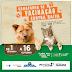 A campanha de vacinação contra Raiva animal vai até dia 16 de outubro em Pintadas