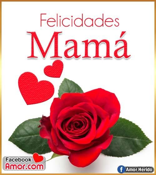 flor de rosa para mamá