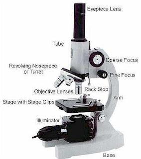 Bagian-Bagian Mikroskop Beserta Gambarnya
